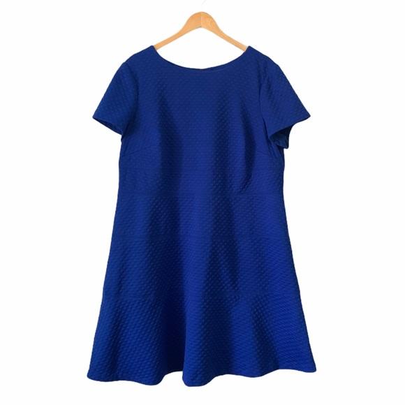 Eliza J Cap sleeve textured scuba dress size 18W